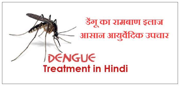dengue ka ilaj, डेंगू के घरेलू उपचार, dengue treatment in hindi, dengue ka gharelu upchar, dengue fever treatment in hindi at home,