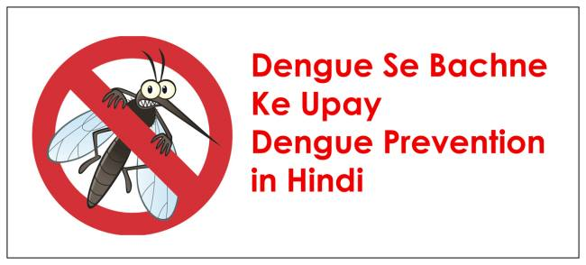 dengue se bachne ke upay, dengue se bachne ke upay in hindi, dengue prevention in hindi, डेंगू से बचाव के घरेलू उपाय,