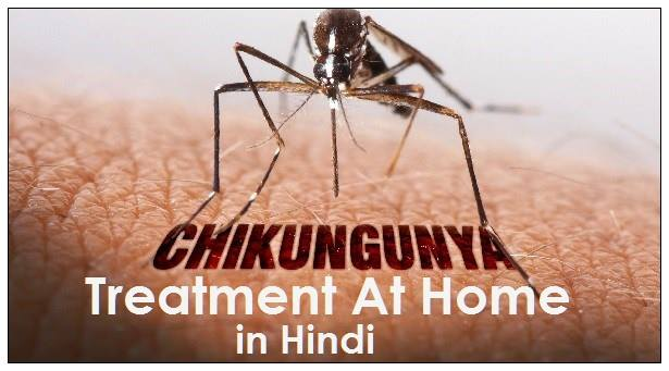 chikungunya treatment in hindi, chikungunya treatment in hindi at home, chikungunya ayurvedic treatment in hindi