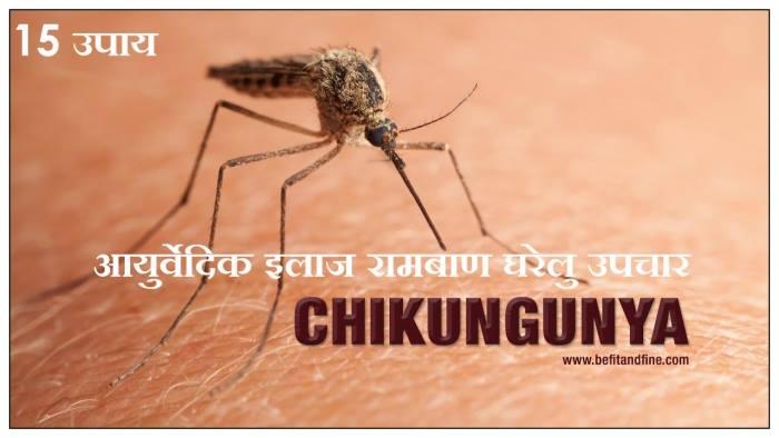 chikungunya ka ilaj, chikungunya in hindi, chikungunya ke gharelu upay
