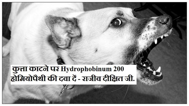 rabies treatment in hindi, homeopathy medicine for rabies